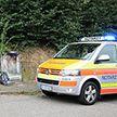 Шершни атаковали гостей фестиваля в Германии