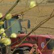 В Витебской области все сельхозпредприятия включились в посевную кампанию