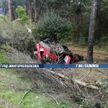 ДТП на МКАД: машина после заноса врезалась в дерево