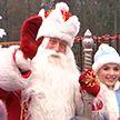 В Беловежской пуще зажгли первую новогоднюю ёлку. Официально!