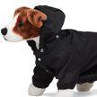 Prada выпустил нейлоновый плащ для собак