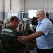 Лукашенко в Тихиничах: Если все деревни в будущем такими будут, то и городов не надо