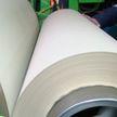 Завод по выпуску картона в Добруше: почему работы по строительству еще не завершены и какие проблемы из этого вытекают
