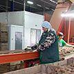 20 тысяч тонн овощей и фруктов заготовили на зиму: в Гомельской области сформированы стабфонды продовольствия