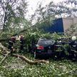 Сильный дождь и град прошёл в Минске: поваленные деревья, затопленные дороги