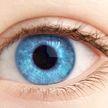 Почему у рыжих людей глаза зеленые, а у блондинов голубые – от чего это зависит?