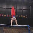 На Олимпиаде завершились соревнования по спортивной гимнастике