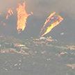 Пожары в Калифорнии: огнём охвачено более трёх тысяч квадратных километров