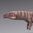 Ученые: предки крокодилов ходили на двух лапах