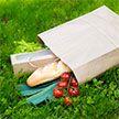 Необходимо дать зеленый свет – Лукашенко рассказал о перспективах производства экологичной упаковки