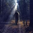 Грибник заблудился и провёл три дня в лесу под Хойниками, питаясь ягодами