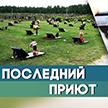 Минчанин создал сайт, который помогает искать могилы близких. Как работает полезный сервис?