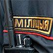 МВД рассказало об обеспечении общественного порядка на массовом мероприятии в столичном парке Дружбы народов