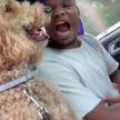«Как братья». Шуточное сражение между хозяином и псом в дороге рассмешило пользователей соцсетей