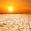 Аномальная жара: 7+ фото последствий, которые поразят вас. 4-й снимок – особенно неожиданный!