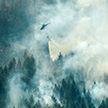 В Швеции не хватает ресурсов, чтобы потушить самые крупные лесные пожары