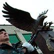Юбилей особого назначения: белорусский ОМОН  отмечает 30-летие