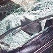 В Лепельском районе авто насмерть сбил мужчину