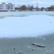 Трое детей провалились под лед на Светиловском озере: подробности происшествия и комментарии ОСВОД