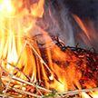 Под Слонимом сгорело 90 тонн сена