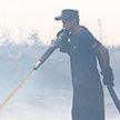 На юге Беларуси тушат крупный торфяной пожар