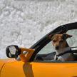 Как проверить авто из вторых рук перед покупкой? Рассказывает эксперт