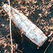 В рыбхозе под Брестом выловили снаряд времён Великой Отечественной войны