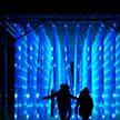 В Лондоне стартовал рождественский сезон: королевский ботанический сад украсили световыми инсталляциями