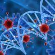 В Бразилии обнаружили новый вирус с неизвестной ДНК