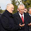 Лукашенко: «Наша беда – психология. Мы, аграрии, начинаем ныть: а вот нам тяжело...»