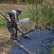 Пятно нефтепродуктов устраняют в Бресте