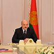 Ход строительства высокотехнологичного агропроизводства под Минском обсудили у Президента