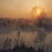 Оранжевый уровень опасности объявлен в Беларуси 22 октября из-за тумана