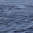 3 ребенка утонули за сутки в Гомельской и Минской областях