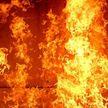 Женщина погибла на пожаре в Мстиславском районе