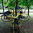 Появился телеграм-канал, где публикуют фото издевательств минчан над велосипедами