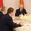 Лукашенко о Белорусской национальной биотехнологической корпорации: Это предприятие сродни космическим проектам