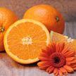 Названы признаки отличия плохих апельсинов от хороших