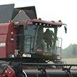 На белорусских полях завершена уборка зерновых