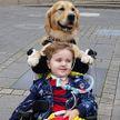 «Врачи плакали». Собака спасла умирающего после операции мальчика