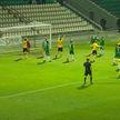 Солигорский «Шахтер» досрочно стал чемпионом Беларуси по футболу