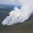 Лесной пожар сутки тушили в Пуховичском районе (ФОТО и ВИДЕО)
