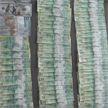 10% от стоимости товара: начальник патологоанатомического бюро 16 лет брал взятки