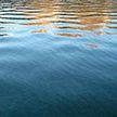 Два рыбака утонули в водоёме Кобринского района