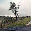 Разрушительный торнадо прошёл в Австралии