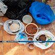 В Минске милиция ликвидировала сеть наркоторговцев, задержано восемь человек