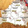 Свежие цифры с полей: более 2,5 миллионов тонн зерна уже в закромах
