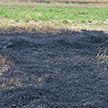 Пенсионерка пострадала, сжигая мусор в Новогрудском районе