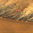 Лесные пожары в США привели к критической ситуации