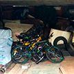 Воров, похищавших велосипеды и сдававших их в прокат, поймали в Витебске